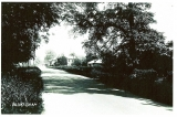 Rectory Road towards Prince of Wales